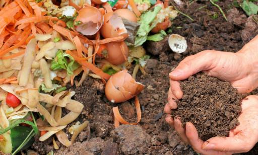 Webinar Gagasan: Cara Mengolah Sampah Dapur Organik (Eco Enzyme) Menjadi Pupuk Kebun dan Hidroponik