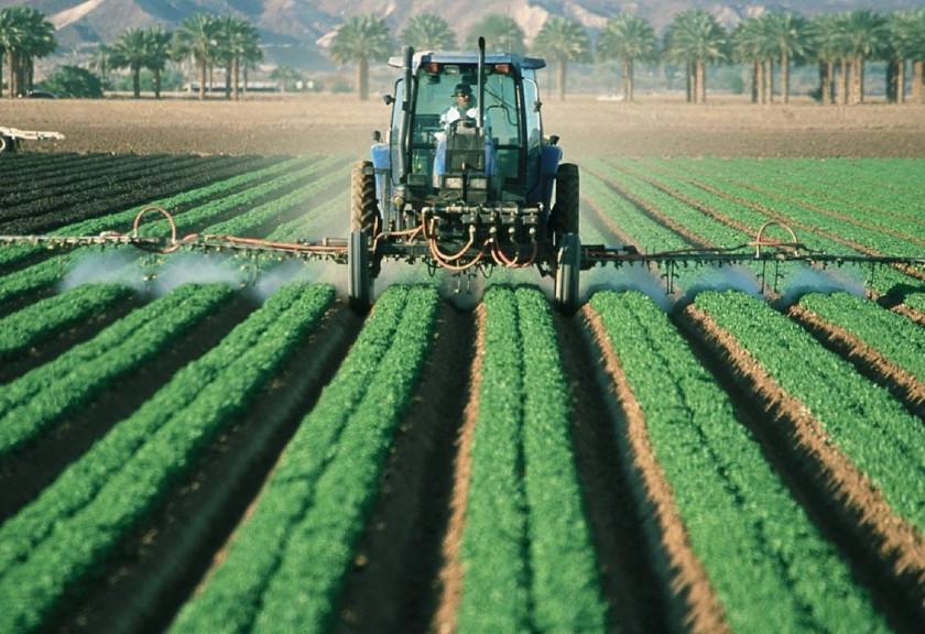 Konsep Pintar Farming Berbasis Kearifan Lokal Suku Baduy Sebagai Penguatan Ketahanan Pangan