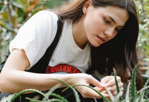 Sudah Tepatkah Ungkapan Yang Muda Yang Bertani?
