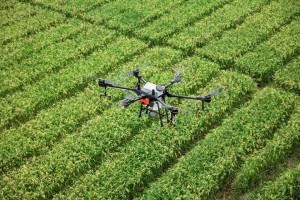 Tiga Cara Meyakinkan Generasi Milenial Kalau Pertanian Itu Keren