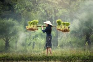 Kabupaten Gresik Darurat Agraria! Wujudkan Petani Muda Melalui Komunitas Lindung Alam Pantai Utara Gresik