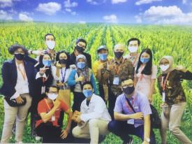 Vertical Farming Organic