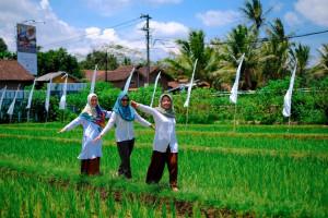 Cara Membuat Desa Wisata Pertanian yang Berkelanjutan: Lesson learnt dari agrowisata hits