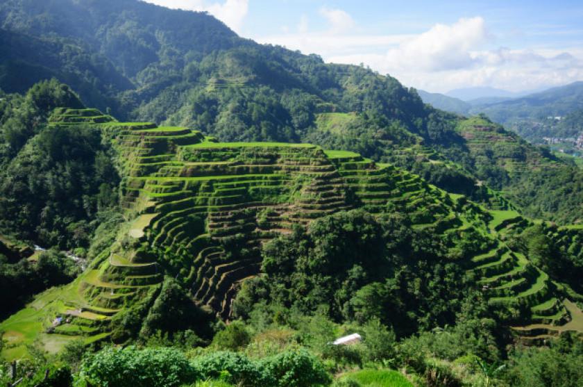 Budidaya Lorong dan Teras Gulud Sebagai Kombinasi Konservasi Vegetatif dan Mekanik pada Lahan Kering di Indonesia